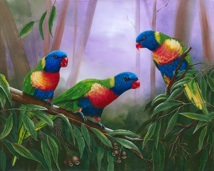 LORIKEETS - Limited Edition Giclee Print Ed. 1 of 100