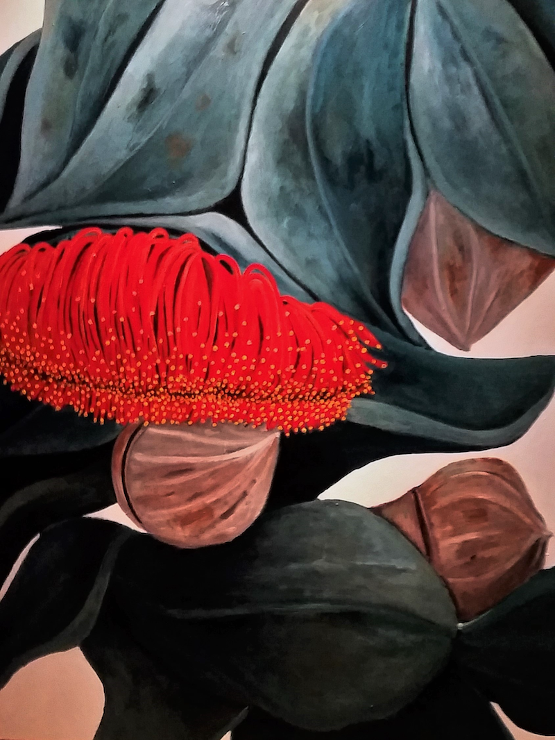(CreativeWork) Just Hanging Around - Australian Gum Flower by Maria Cross. arcylic-painting. Shop online at Bluethumb.
