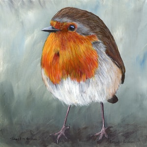 (CreativeWork) Robin  by Janet Graham. acrylic-painting. Shop online at Bluethumb.