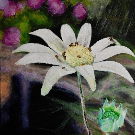 (CreativeWork) Flannel Flower by Rodney Black. Acrylic Paint. Shop online at Bluethumb.