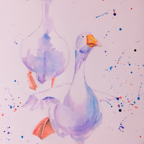 (CreativeWork) Fly by Duillia Xu. Watercolour Paint. Shop online at Bluethumb.