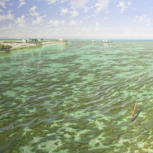 (CreativeWork) Shallows at Jacko's Island, ABROLHOS ISLANDS by Paul Lucas. oil-painting. Shop online at Bluethumb.
