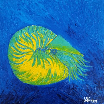 (CreativeWork) Chambered Nautilus by Wendy Steinberg. Acrylic Paint. Shop online at Bluethumb.