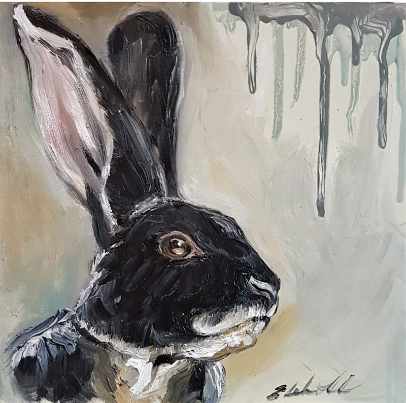 (CreativeWork) Black Otter Rex Rabbit (Oryctolagus cuniculus)  by Liz H Lovell. Oil Paint. Shop online at Bluethumb.
