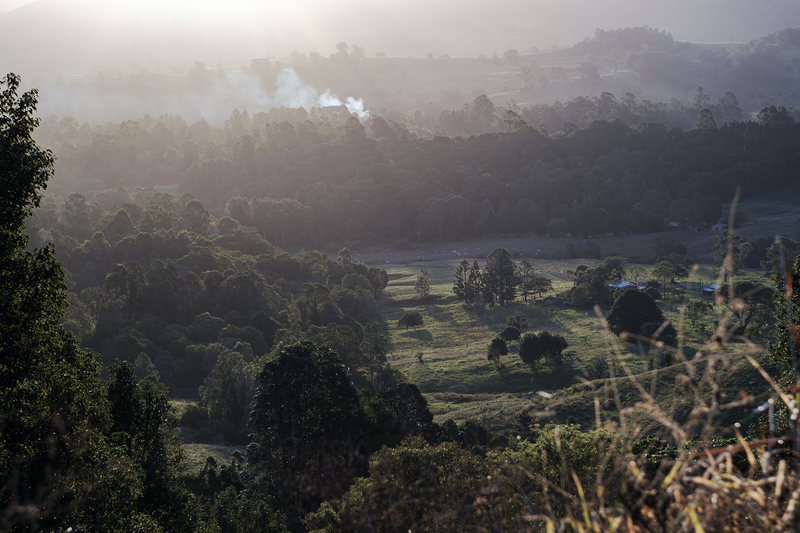 (CreativeWork) View Outside Nimbin by Dale Harper. photograph. Shop online at Bluethumb.