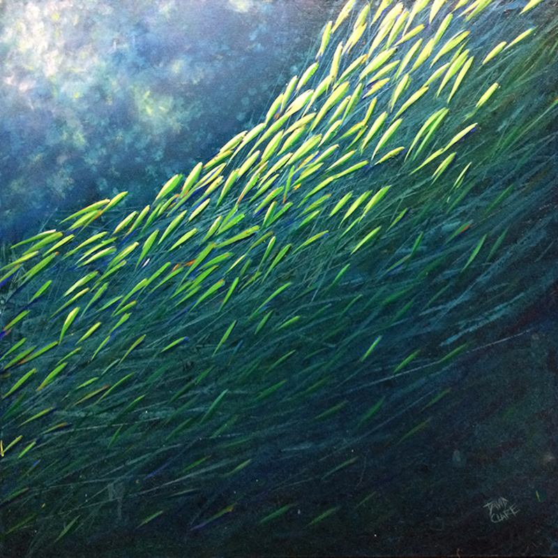 (CreativeWork) Little Green Fish by David Clare. oil-painting. Shop online at Bluethumb.