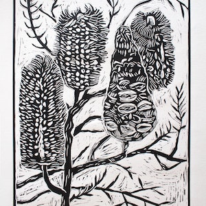 (CreativeWork) Banksia linocut  Ed. 5 of 20 by Matthew Broughton. #<Filter:0x00007fbcb3acb710>. Shop online at Bluethumb.
