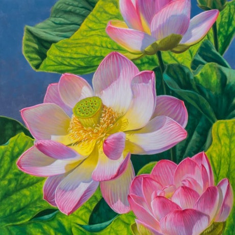 (CreativeWork) Pink Lotuses 2 by Fiona Craig. Oil Paint. Shop online at Bluethumb.