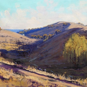 (CreativeWork) Afternoon light Kanimbla Valley by Graham Gercken. oil-painting. Shop online at Bluethumb.