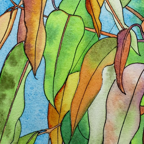 (CreativeWork) Autumn Gum Leaves by Gavin Bridge. Watercolour Paint. Shop online at Bluethumb.