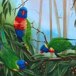 (CreativeWork) LORIKEETS TRIO -  Limited Edition Giclee Print Ed. 1 of 100 by Debra Dickson. print. Shop online at Bluethumb.