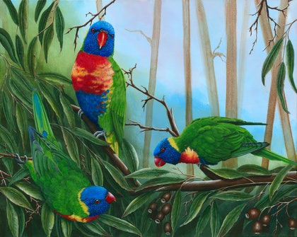 LORIKEETS TRIO -  Limited Edition Giclee Print Ed. 1 of 100