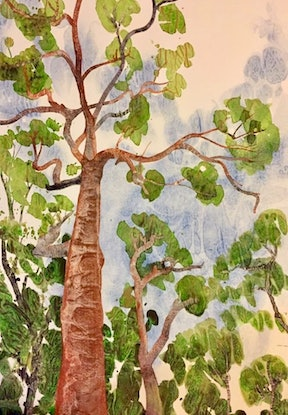 (CreativeWork) Cedar Gum by Gavin Bridge. Watercolour Paint. Shop online at Bluethumb.