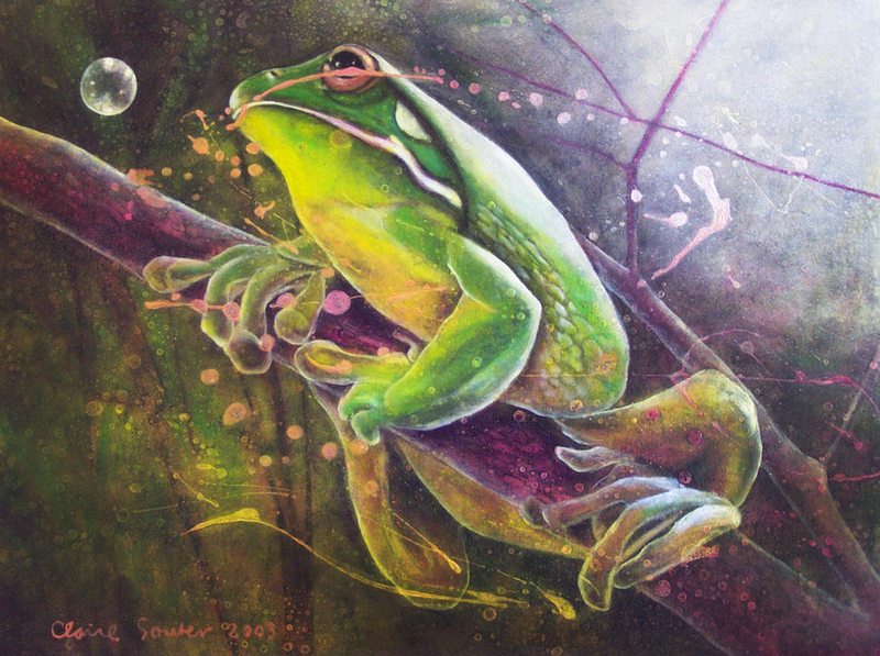 (CreativeWork) green tree frog 6 by Claire Souter. Oil Paint. Shop online at Bluethumb.