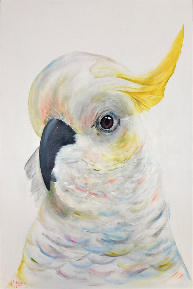 """(CreativeWork) White Sulphur """"Minnie""""  by HEYLIE MORRIS. arcylic-painting. Shop online at Bluethumb."""