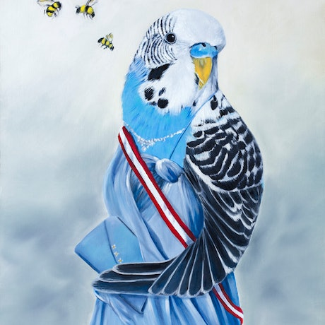 (CreativeWork) The Budgie Ball Ed. 1 of 150 by Mia Laing. Print. Shop online at Bluethumb.