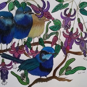 (CreativeWork) Blue wren family 🐦🐦🐦🐦 by Annarine Chapman MAHINA ARTS. watercolour. Shop online at Bluethumb.