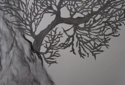 (CreativeWork) Black Coral by Maree Saville. drawing. Shop online at Bluethumb.