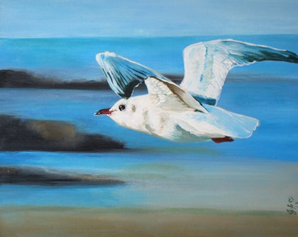 (CreativeWork) Seagull in Flight by Julie Hollis. arcylic-painting. Shop online at Bluethumb.