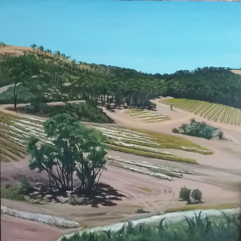 (CreativeWork) Summer at the Grape Farm Moonambel  by Dawn Lim. oil-painting. Shop online at Bluethumb.