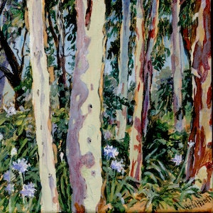 (CreativeWork) Gum Trees in the garden by Heidi Hereth. arcylic-painting. Shop online at Bluethumb.