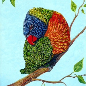 (CreativeWork) Shy Boy - Rainbow Lorikeet by Linda Callaghan. arcylic-painting. Shop online at Bluethumb.