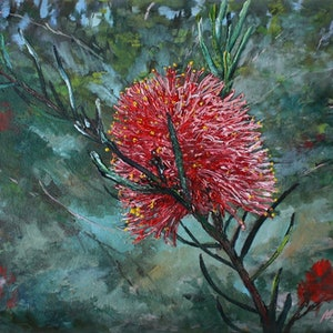 (CreativeWork) GREVILLEA by Margaret HADFIELD. oil-painting. Shop online at Bluethumb.