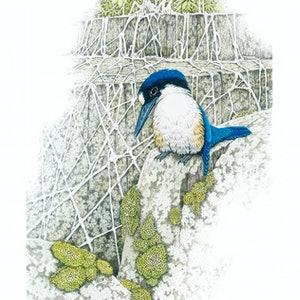 "(CreativeWork) "" Down but not out""  (Forest Kingfisher) by David Hilton Stacey. mixed-media. Shop online at Bluethumb."