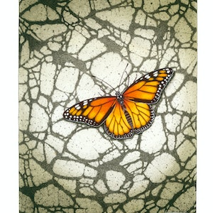 "(CreativeWork) ""Monarch Butterfly"" ( Danaus plexippus) by David Hilton Stacey. mixed-media. Shop online at Bluethumb."