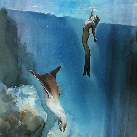 (CreativeWork) the seal and the diver by peter smart. Watercolour Paint. Shop online at Bluethumb.
