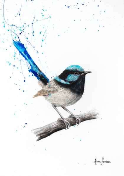 (CreativeWork) Wren Whisper - Limited Edition Print- A3 size -  Ed. 2 of 100 by Ashvin Harrison. print. Shop online at Bluethumb.