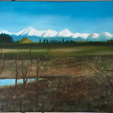 """(CreativeWork) """"First Snow"""" by June king. Oil Paint. Shop online at Bluethumb."""