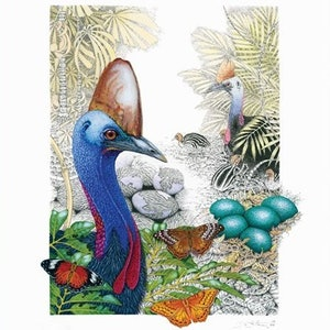 (CreativeWork) Australian  Cassowary -Art Print Ed. 25 of 99 by David Hilton Stacey. print. Shop online at Bluethumb.