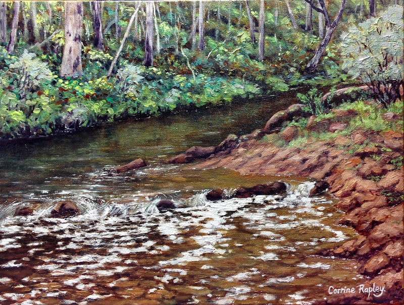 (CreativeWork) Murray River Rapids by Corrine Rapley. oil-painting. Shop online at Bluethumb.