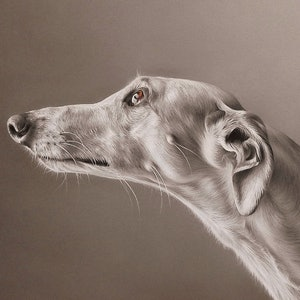 "(CreativeWork) ""Greyhound - 2"" by Elena Kolotusha. print. Shop online at Bluethumb."