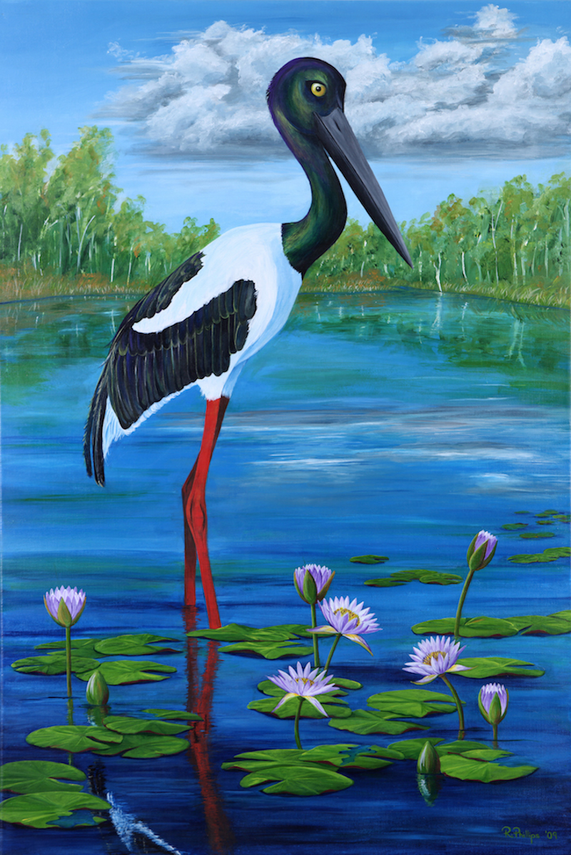 (CreativeWork) Jabiru Jill by Rebecca Phillips. arcylic-painting. Shop online at Bluethumb.
