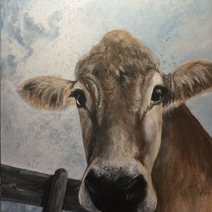 (CreativeWork) Curious cow by Helen Pilkington. arcylic-painting. Shop online at Bluethumb.
