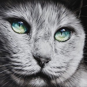 "(CreativeWork) Set of 2 cat prints - ""Green-eyed diva"" and  ""The look"" by Elena Kolotusha. print. Shop online at Bluethumb."