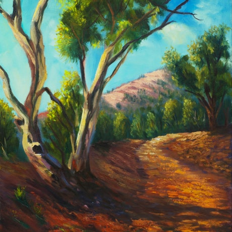 (CreativeWork) On the road Flinders Ranges South Australia by Christopher Vidal. Oil Paint. Shop online at Bluethumb.
