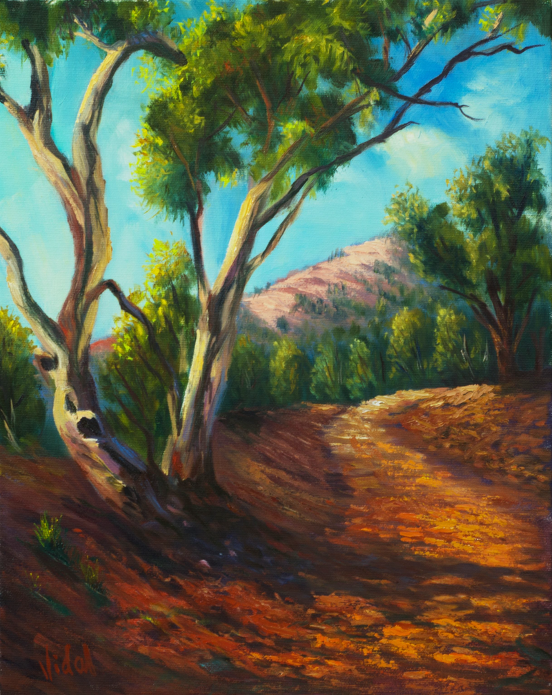 (CreativeWork) On the road Flinders Ranges South Australia by Christopher Vidal. oil-painting. Shop online at Bluethumb.