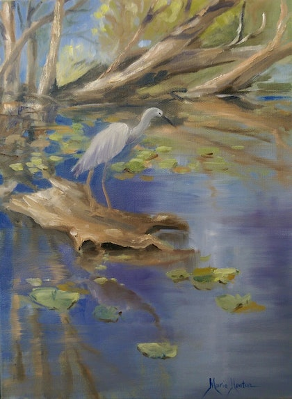 (CreativeWork) On the Billabong  by Maria Heaton. oil-painting. Shop online at Bluethumb.