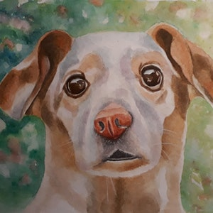 (CreativeWork) Puppy by Svetlana Cook. watercolour. Shop online at Bluethumb.