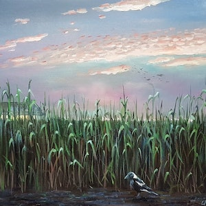 (CreativeWork) Sugarcane by Llael McDonald. oil-painting. Shop online at Bluethumb.