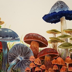 (CreativeWork) Victorian Fungi by Llael McDonald. other-media. Shop online at Bluethumb.