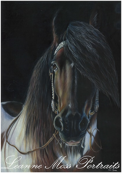 (CreativeWork) The Gentle Giant by Leanne Moss. drawing. Shop online at Bluethumb.