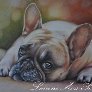 (CreativeWork) Lifes Tough by Leanne Moss. drawing. Shop online at Bluethumb.