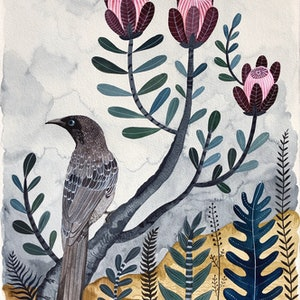 (CreativeWork) Wattle Bird in Protea Bush by Sally Browne. watercolour. Shop online at Bluethumb.