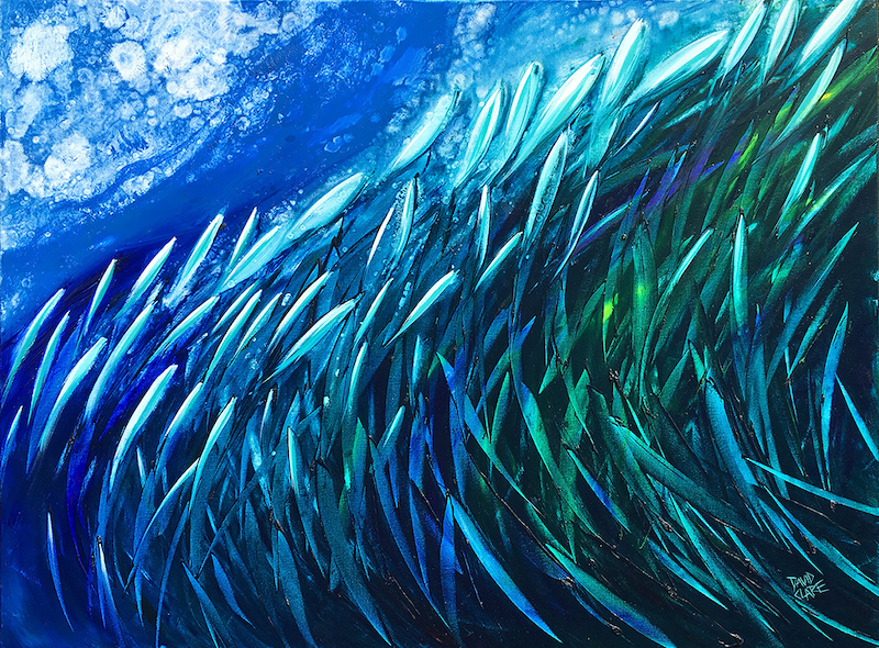 (CreativeWork) Fish Wave by David Clare. oil-painting. Shop online at Bluethumb.