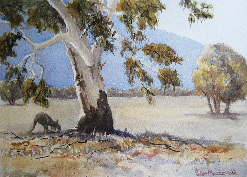 (CreativeWork) Grampians View by Peter Macdonald. watercolour. Shop online at Bluethumb.
