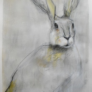 (CreativeWork) Hare by Rebecca Hill. mixed-media. Shop online at Bluethumb.